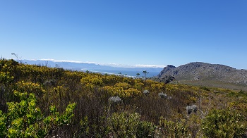 Silvermine River trail on a sunny day
